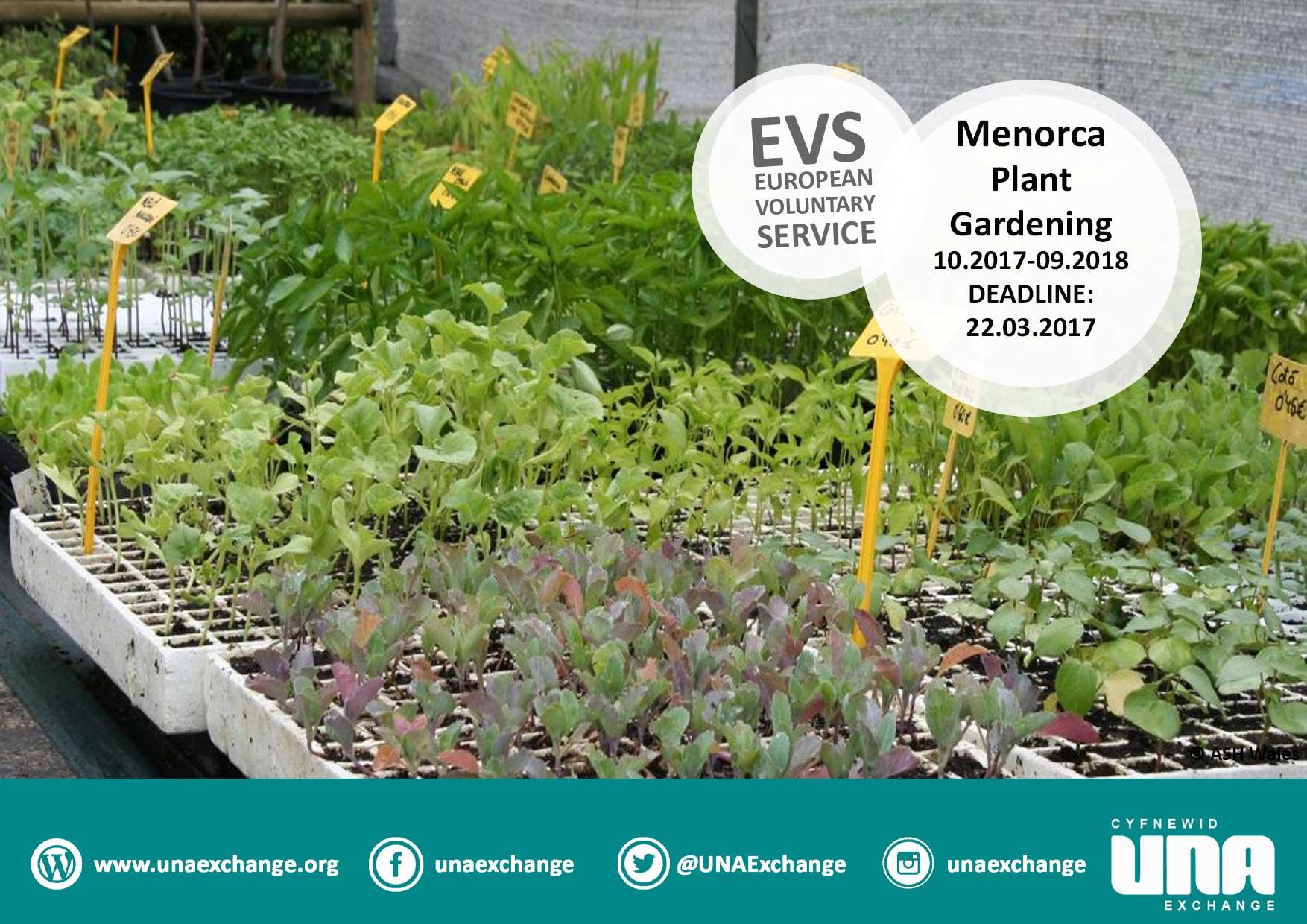 menorca-plant-gardening