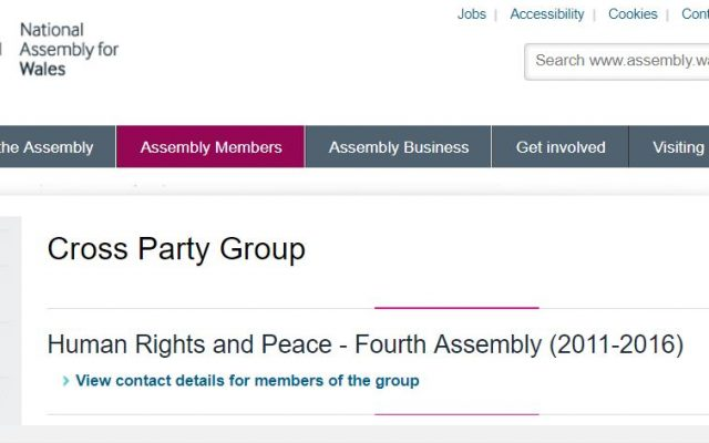 All party Human Rights screen grab