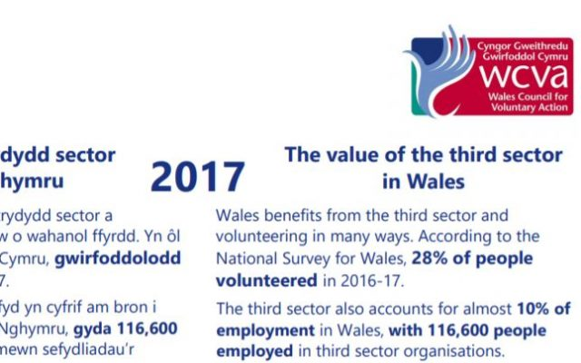 Value of third sector Wales screen grab