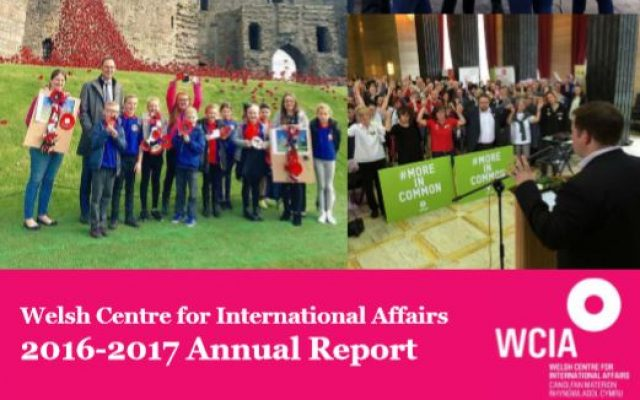 WCIA annual report screen grab